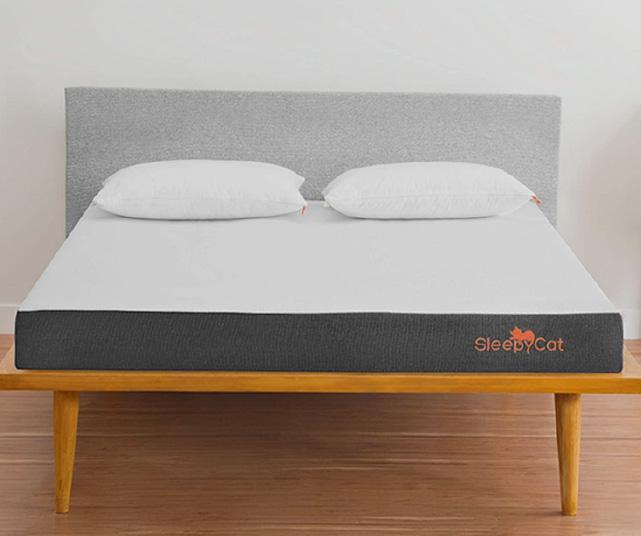 SleepyCat-Plus-8-Inch-Orthopedic-Memory-Foam-Mattress-review